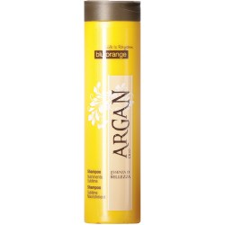 Parrucchieria BLU ORANGE ARGAN 100% BIOLOGICO SHAMPOO NUTRIMENTO SUBLIME BLU ORANGE